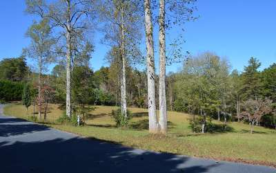 Blairsville GA Residential Lots & Land For Sale: $39,500
