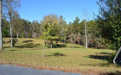 Blairsville GA Residential Lots & Land For Sale: $38,000