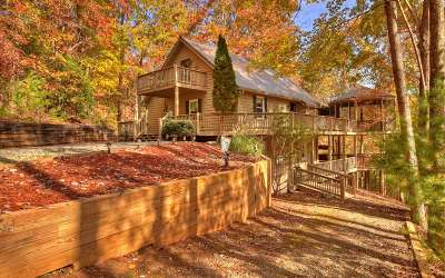 Ellijay Single Family Home For Sale: 370 Valley View Road