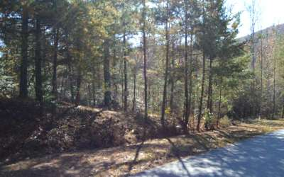 Blairsville GA Residential Lots & Land For Sale: $24,900