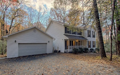 Blairsville Single Family Home For Sale: 286 Leahs Lane