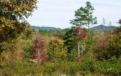 Young Harris Residential Lots & Land For Sale: Lt 22 Brookhaven Drive