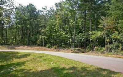 Ellijay Residential Lots & Land For Sale: 8 Brumby Trail