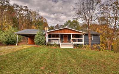 Ellijay Single Family Home For Sale: 185 S Jones Mill Road