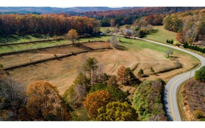 Blairsville GA Residential Lots & Land For Sale: $48,500