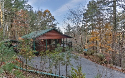 Mineral Bluff Single Family Home For Sale: 566 Lowery Rd