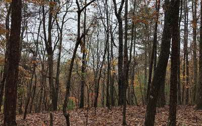 Ellijay Residential Lots & Land For Sale: 2294r Newport Dr