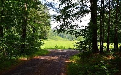 Jasper Residential Lots & Land For Sale: Lot 1 Meadowlands Dr