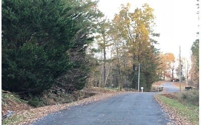 Ellijay Residential Lots & Land For Sale: Lt 43 Hickory Ridge Drive