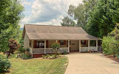 Hiawassee Single Family Home For Sale: 447 Chatuge Trail