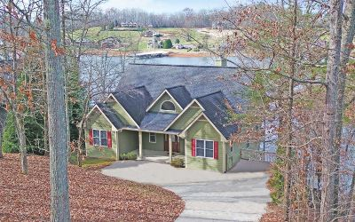 Hayesville Single Family Home For Sale: 290 Sneaking Creek Drive