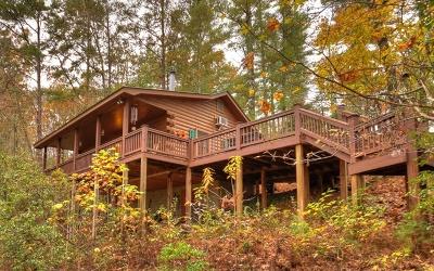 Blue Ridge Single Family Home For Sale: 78 Dean Court