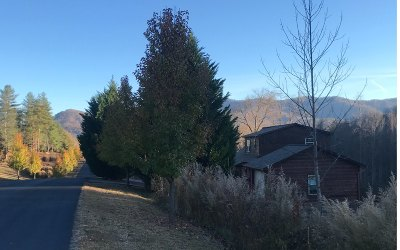 Residential Lots & Land For Sale: 61 Double Springs