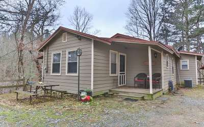 Ellijay Single Family Home For Sale: 1613 Nugget