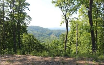Ellijay Residential Lots & Land For Sale: Lt289 High Rock Trail #289