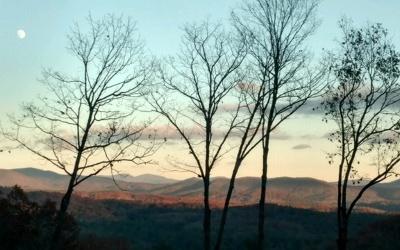Blue Ridge Single Family Home For Sale: Lt 16 Little Creek Overloo