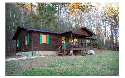 Cherokee County Single Family Home For Sale: 678 High Falls Road