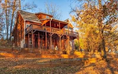 Ellijay Single Family Home For Sale: 740 Drena Drive