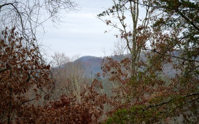 Fannin County Residential Lots & Land For Sale: .72 Salem & Highland