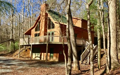 Ellijay Single Family Home For Sale: 747 Litmus Court