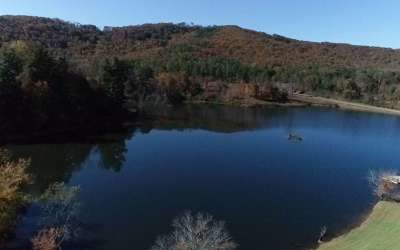 Ellijay Residential Lots & Land For Sale: Lt351 Lake Vista Ct Lt351