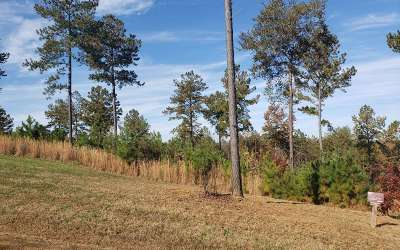 Blairsville Residential Lots & Land For Sale: #337 The Cove Phase 2