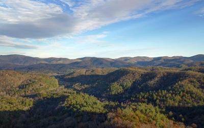 Blairsville Residential Lots & Land For Sale: Flat Rock Ridge 1.5
