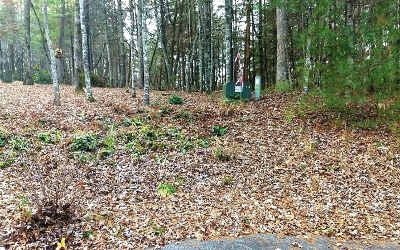 Blairsville Residential Lots & Land For Sale: Lt118 The Sanctuary