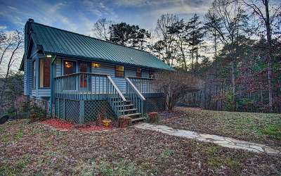 Blue Ridge Single Family Home For Sale: 599 Deer Hunter Road