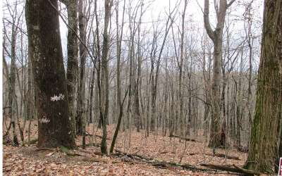 Jasper Residential Lots & Land For Sale: 177 Cold Stream Trail