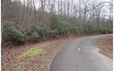 Jasper Residential Lots & Land For Sale: 154 Cold Stream Trail