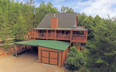 Blairsville Single Family Home For Sale: 36 Top O World Road