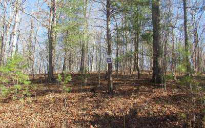 Mineral Bluff Residential Lots & Land For Sale: Lt 36 Wolf Creek Estates