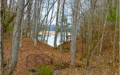 Blairsville Residential Lots & Land For Sale: 31/36 Arrowood Court