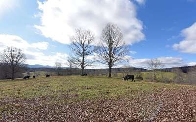 Blairsville Residential Lots & Land For Sale: Milton Akins Road