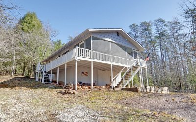 McCaysville Single Family Home For Sale: 417 Old Silver Mine Road