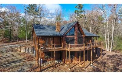 Ellijay Single Family Home For Sale: 142 Ridge Park Drive