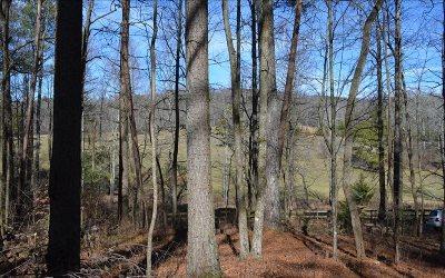 Ellijay Residential Lots & Land For Sale: 109 Pleasant Oak Trial