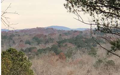 Ellijay Residential Lots & Land For Sale: Carters View Dr