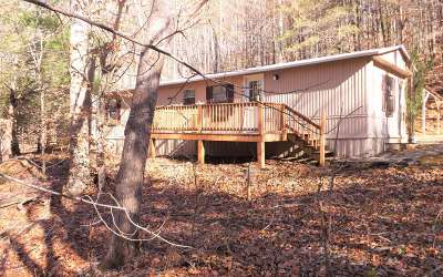 Blairsville Single Family Home For Sale: 197 Spring Cove Road