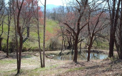 Hayesville Residential Lots & Land For Sale: Hwy 64 E