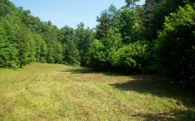 Murphy Residential Lots & Land For Sale: 148 Charlie Lane