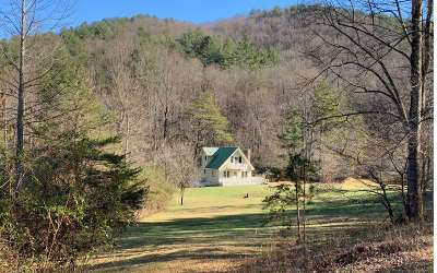 Blairsville Single Family Home For Sale: 223 Berry Rd