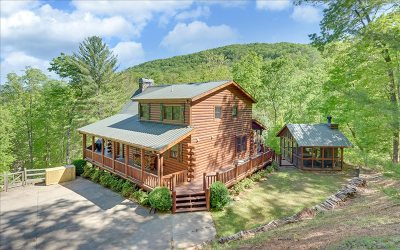 Blue Ridge Single Family Home For Sale: 1925 Shady Falls Road