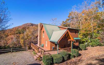 Hiawassee Single Family Home For Sale: 300 Maney Branch Road