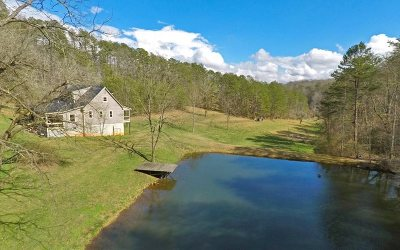 Blue Ridge Single Family Home For Sale: 397 Weaver Creek Road