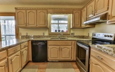 Ellijay Single Family Home For Sale: 1024 Timberwalk Drive