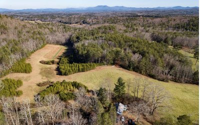 Blue Ridge Single Family Home For Sale: 516 Ritchie Creek Rd