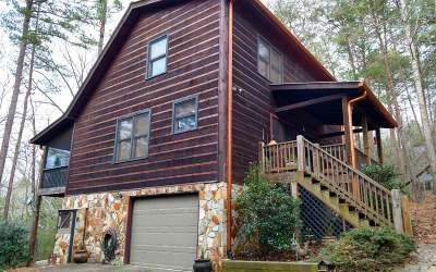 Ellijay Single Family Home For Sale: 132 Seneca Drive