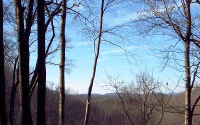 Brasstown Residential Lots & Land For Sale: 1, 2, 3 Weber Way
